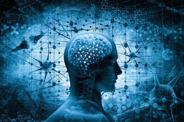 One Mind Image